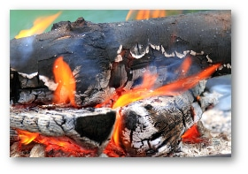firewood for sale denver co