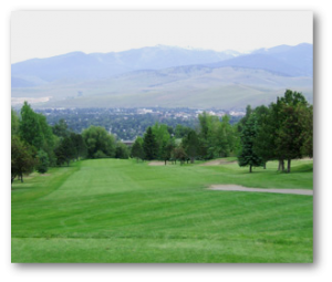 tree service highlands ranch co