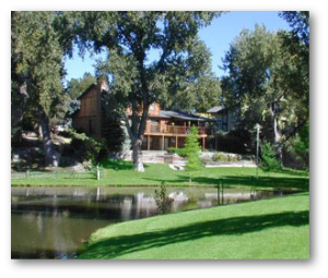 tree service littleton co