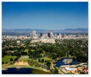 Tree Service in Denver